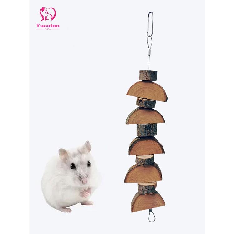 Hamster com mx NEW